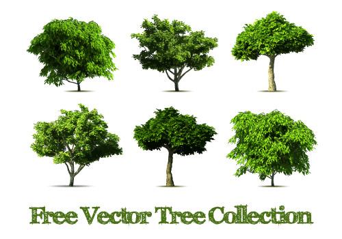 树木矢量图素材 发布者: yecha
