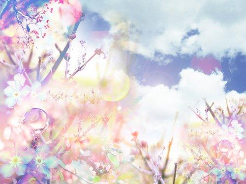 溶图素材第二弹花卉背景型